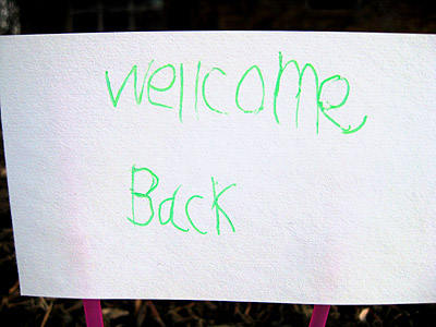 Make that a Wellcome Back sign.  Home sweet home.