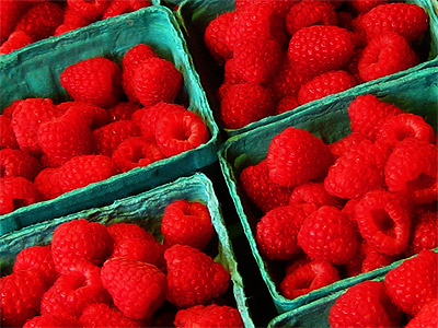My most favorite fruit - Raspberries! Mmm